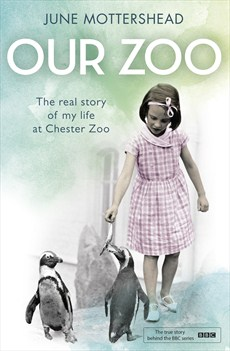 Our Zoo 2